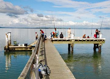 Fishing from the Kauri Point Pier
