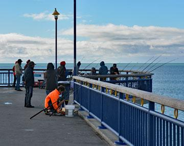 Fishing from the Pier in New Brighton, Christchurch