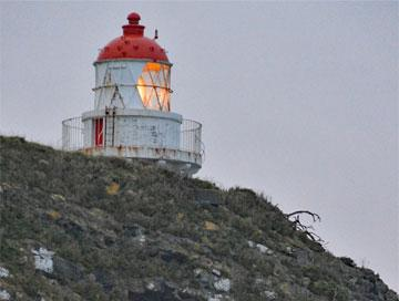 Taiaroa Lighthouse as seen from the Albatross Colony