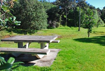 Picnic table in the adjacent reserve