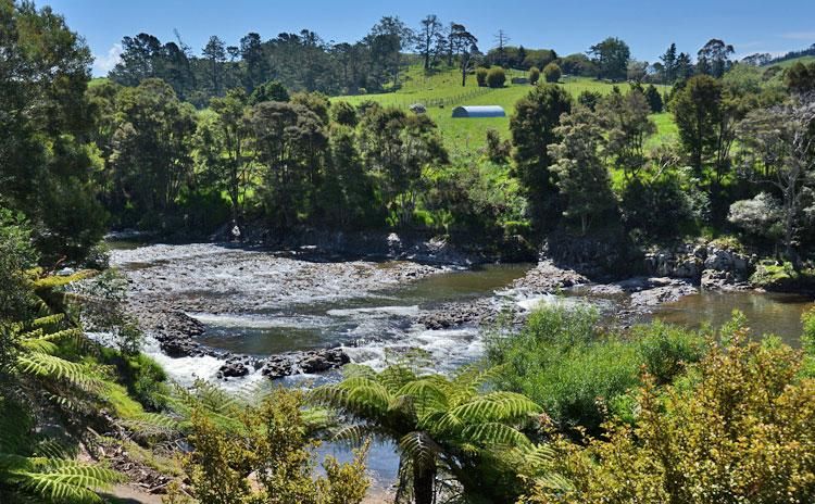 The Waitangi River