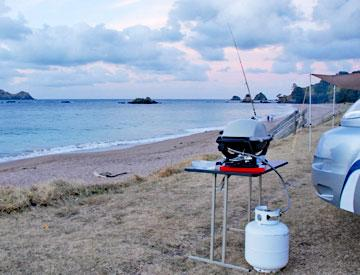 Barbeque by the beach