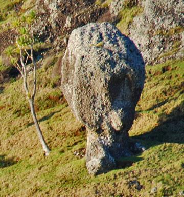 Interesting rock formation - like a person's head overlooking the walkway
