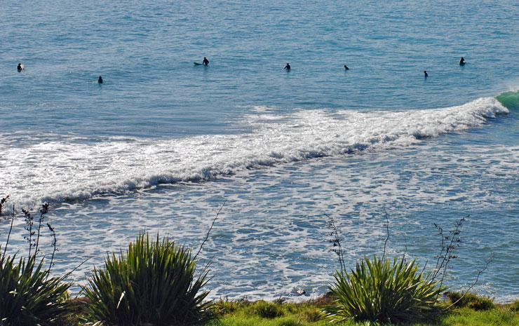 Surfers out in the water