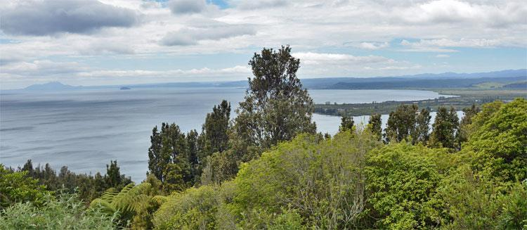 View out over Lake Taupo