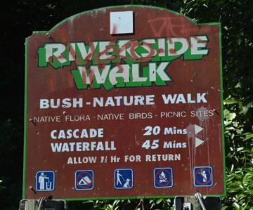 Bush walks sign