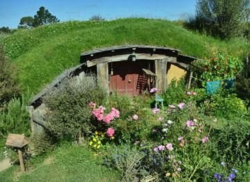 Another Hobbit Hole