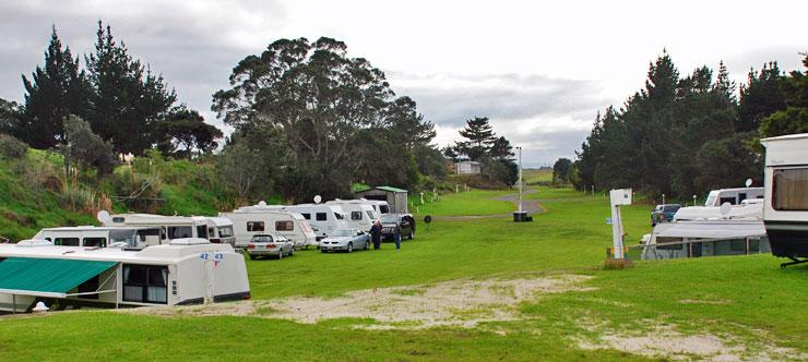 Sheltered, grassed parking area at the Ruakaka Beach Holiday Park