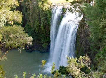 View of the Whangarei Falls