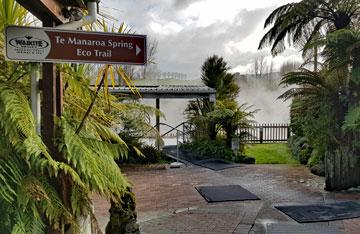Beginning of the Te Manaroa Spring Eco Trail