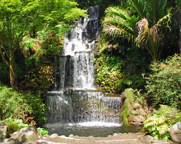 Waterfall within the park