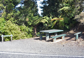 Rest Area at the Whangamomoana Saddle