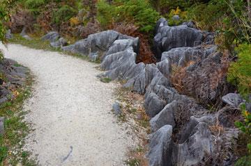 water sculpted rocks along the walkway