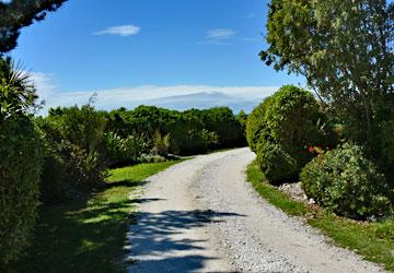 Driveway leading to the reserve
