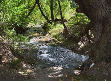 Stream running past the rest area