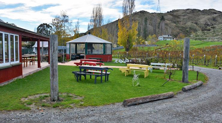 The wine tasting area and vineyard