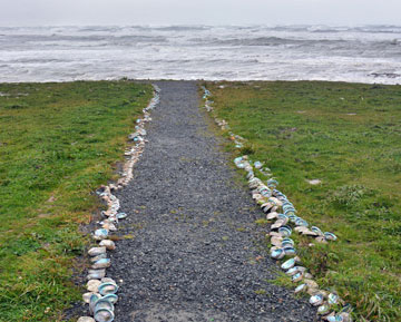 Shell decorated path