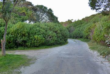 Driveway down to more beach parking