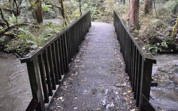 Bridge near the start of the walk to the falls