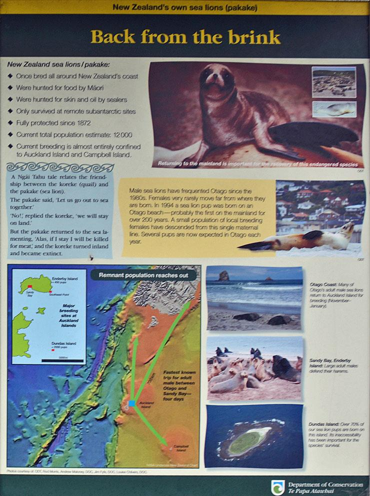 DOC notice about the sea lions