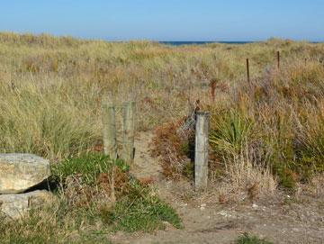 Access to the beach across the sand dunes