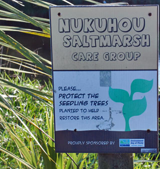 Nukuhou River Saltmarsh Care Group