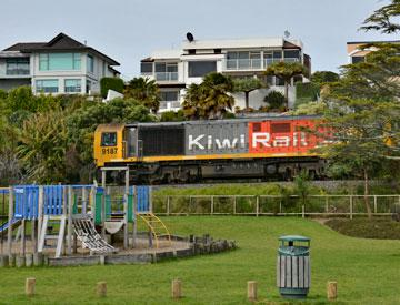 Kiwi Rail trains driving past the reserve.