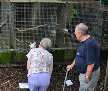 Old couple with cockatoo